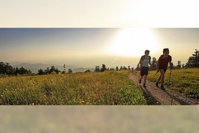 Deutschlands schönster Wanderweg 2019