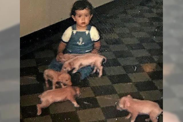 Viel Schwein für 2020 !