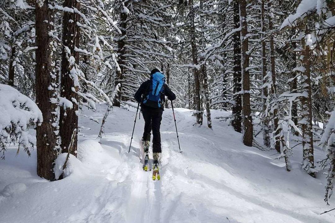 Eine Skitour zum Feldberg ist ein Naturerlebnis (Symbolbild).  | Foto: Jannik Jürgens