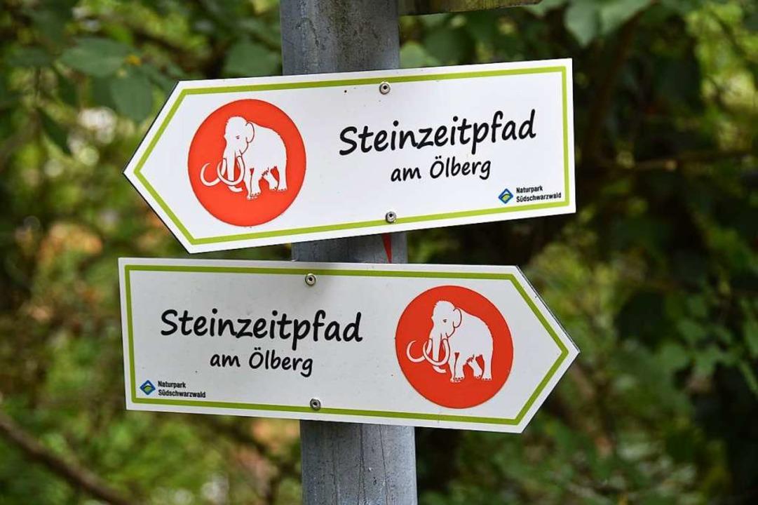 Den Steinzeitpfad kann man in Ehrenkirchen erkunden.  | Foto: Andrea Gallien