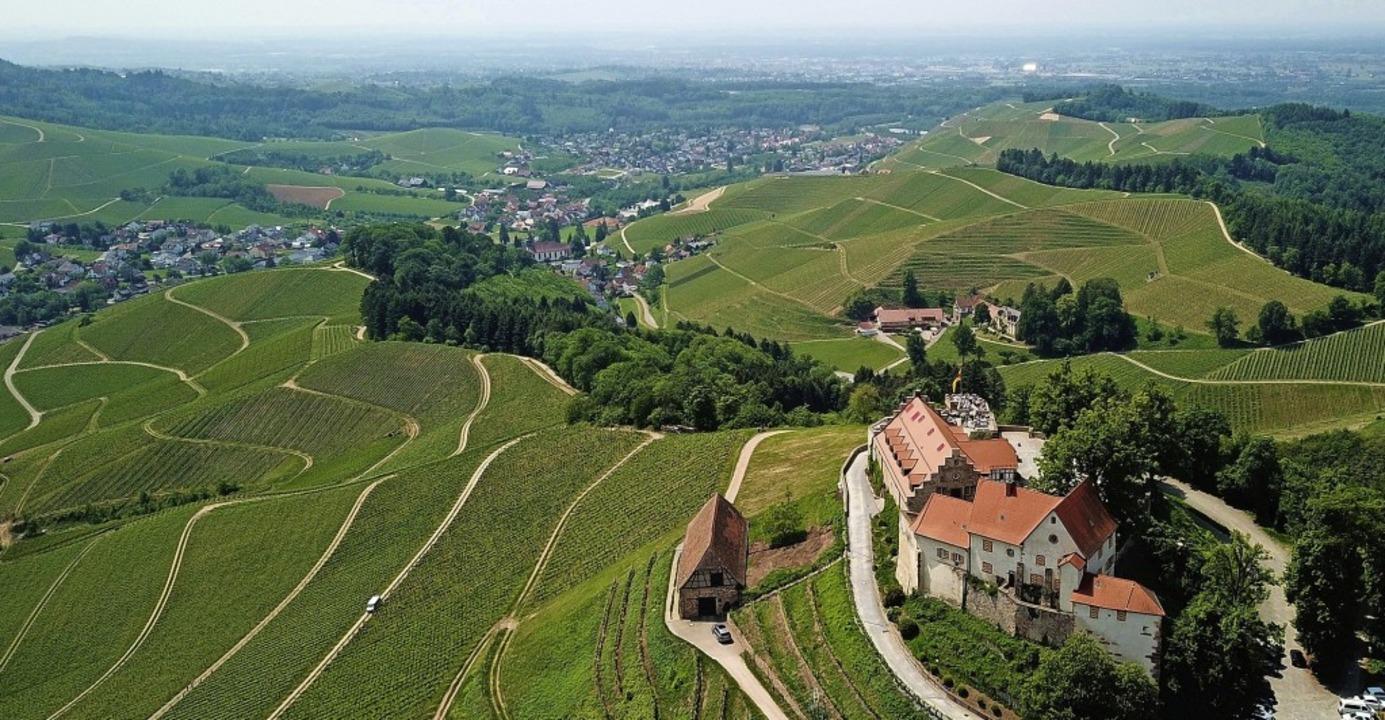 Eine Tagestour des Schwarzwaldvereins ...inpfad  an Schloss Staufenberg vorbei.  | Foto: Michael Saurer
