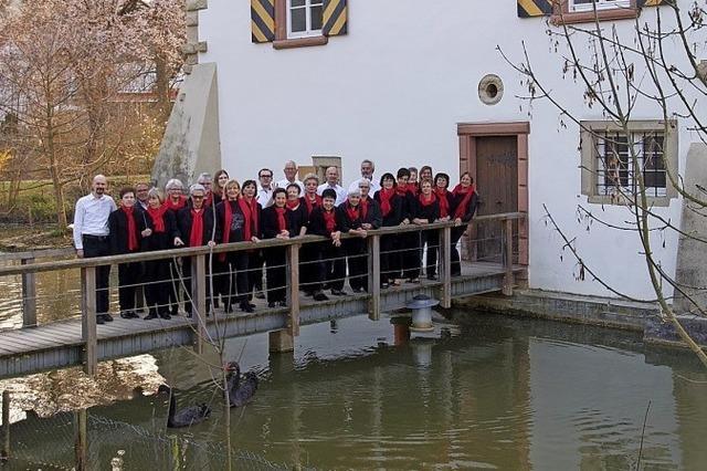 Chor Frohsinn Schliengen in Schliengen