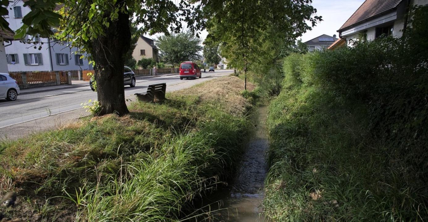 Wieder ein kleiner Bach – im Juli war der Ehebach ein reißendes Gewässer.   | Foto: Volker Münch