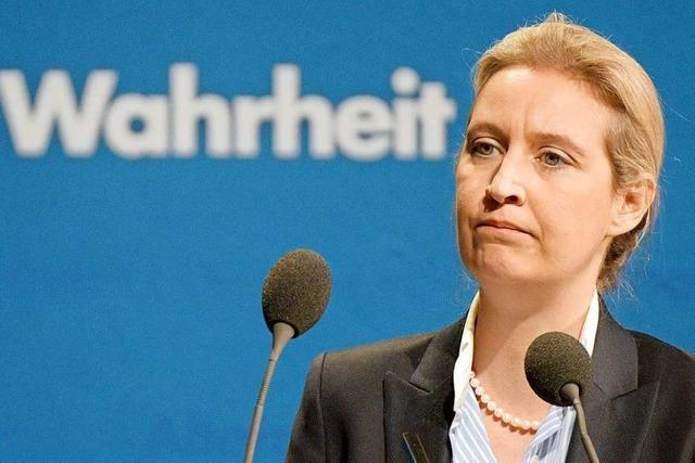 AfD behauptet, Spende aus der Schweiz sei für Alice Weidel gewesen