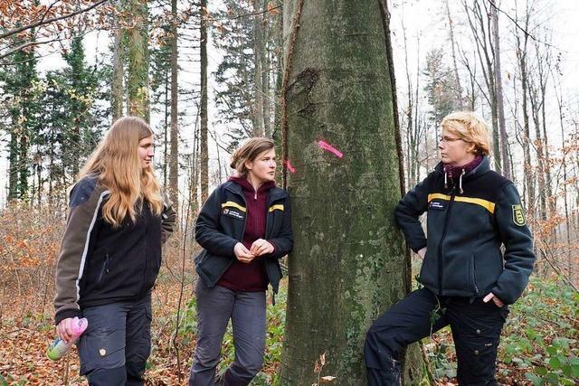 Immer mehr Frauen gehen in die Forstwirtschaft