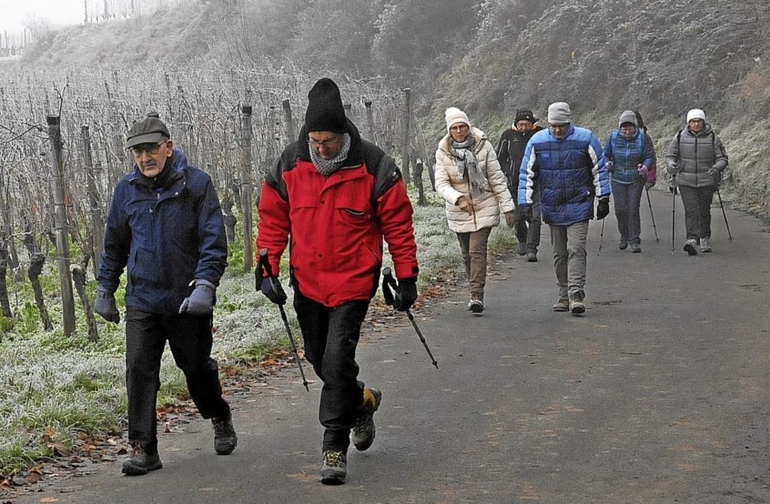 Zahlreiche Wanderer machten sich auf den Weg durch die Oberrotweiler Weinberge.  | Foto: Herbert Trogus
