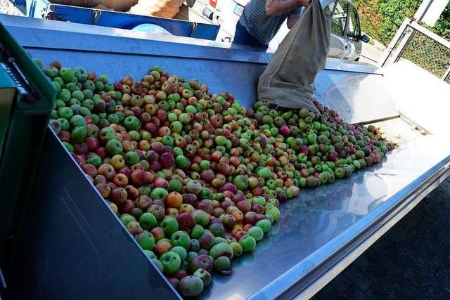 Fruchtsätfte Meier in Lahr-Sulz schließt den Lohnmostbetrieb