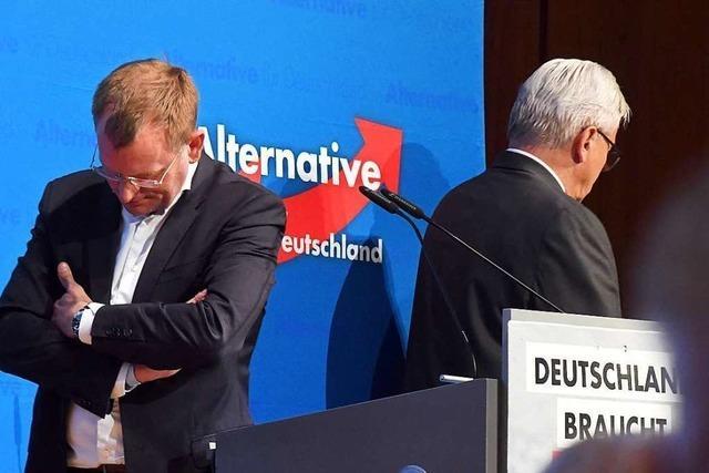 Machtkampf in der Landes-AfD spitzt sich zu