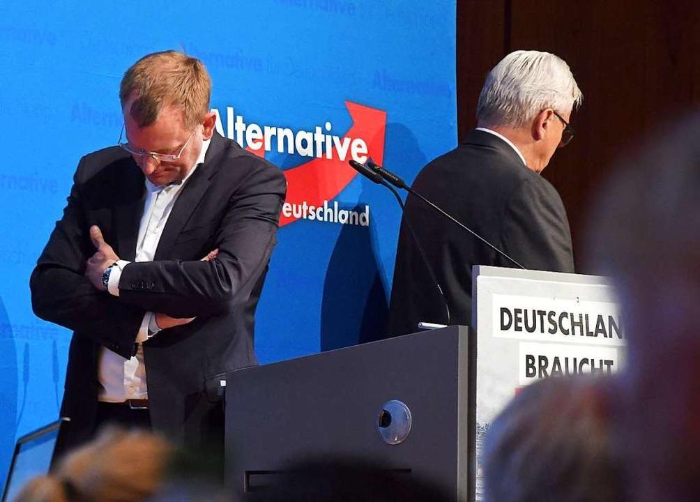 Sie können schon lang nicht mehr mitei... Dirk Spaniel (links) und Bernd Gögel.    Foto: Uli Deck (dpa)