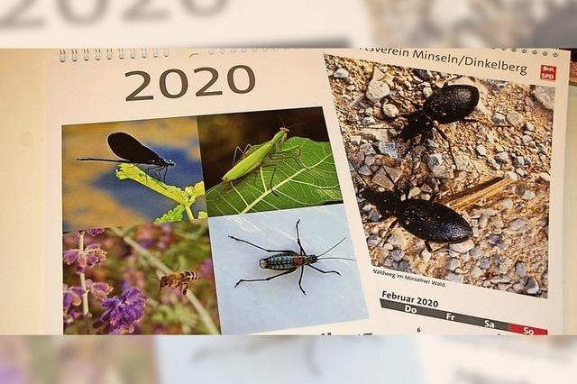 Lobbyarbeit für Insekten