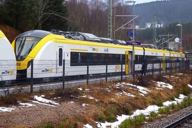 Deutsche Bahn fängt Zugausfall bei Bärental mit Ersatzbussen ab