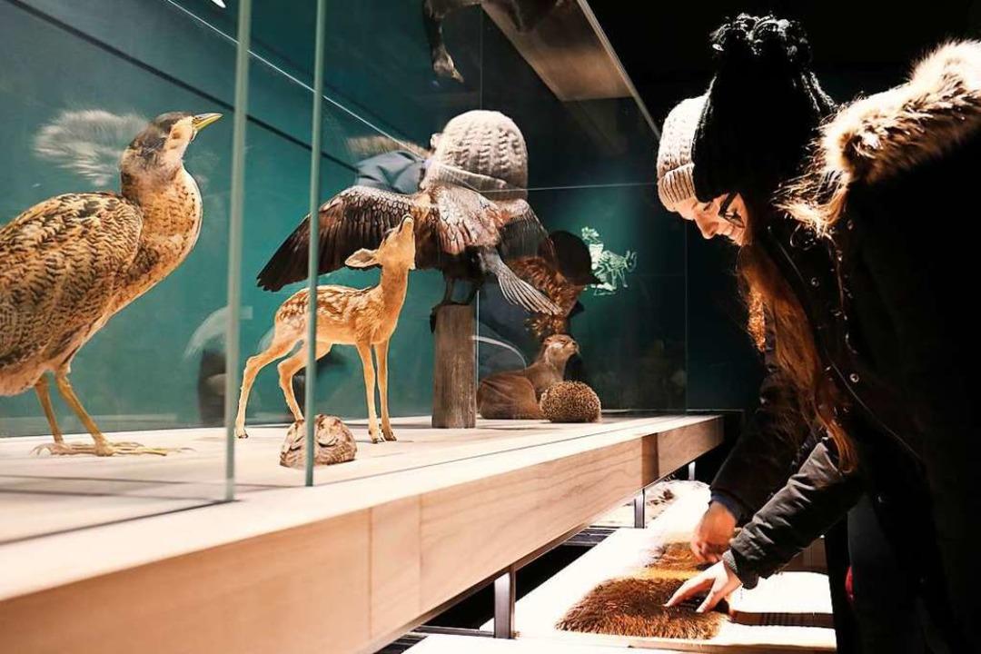 38 Museen und Gastinstitutionen in Bas...n am 17. Januar bis weit in die Nacht.  | Foto: Flavia Schaub