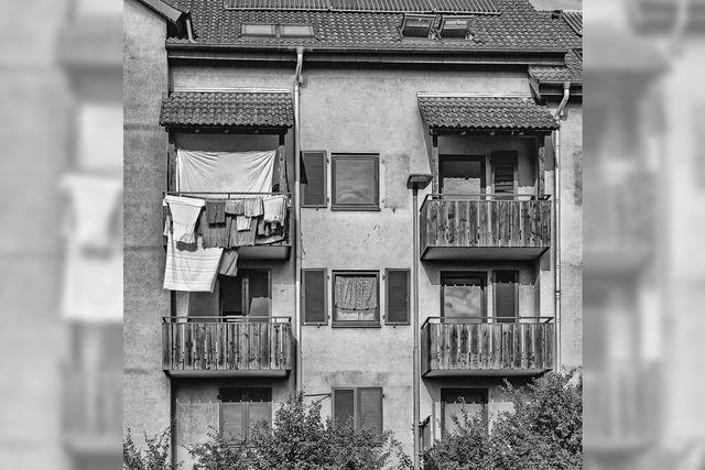 Fotoamateure Teningen in Emmendingen