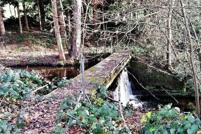 Wegen unklaren Wasserrechten muss der Reichenbacher Dorfbach warten