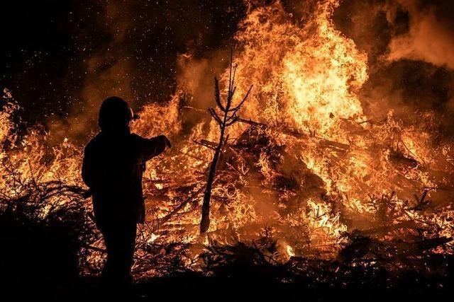 Feuerwehr Gundelfingen verbrennt 900 Weihnachtsbäume
