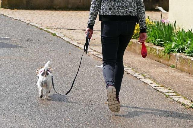 Görwihls Hundesteuer bleibt trotz Protesten bei 200 Euro