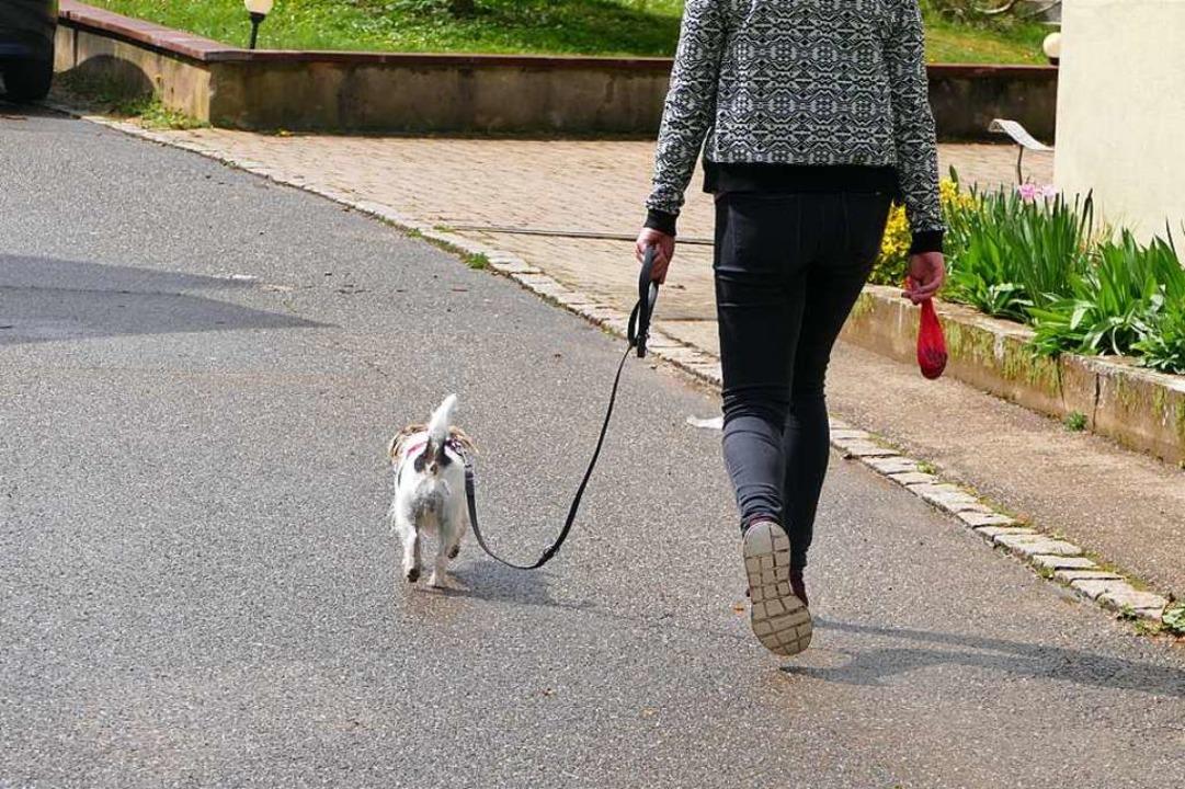 Vor 15 Monaten hatte der alte Gemeinde...ufhin protestierten die Hundebesitzer.  | Foto: Victoria Langelott