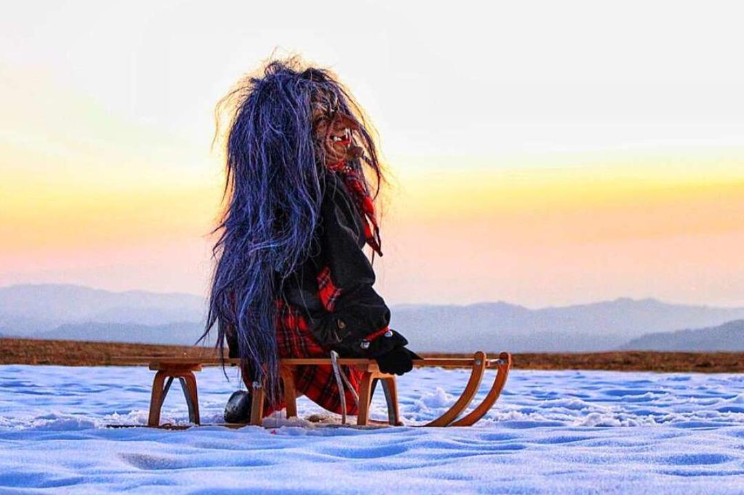 Eine Welsch-Häxe genießt die Winterfreuden.  | Foto: Silvie Kulkova