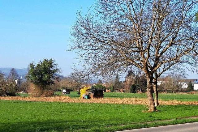 Die Grundstücksverhandlungen für Kapellenbach-Ost gehen gut voran