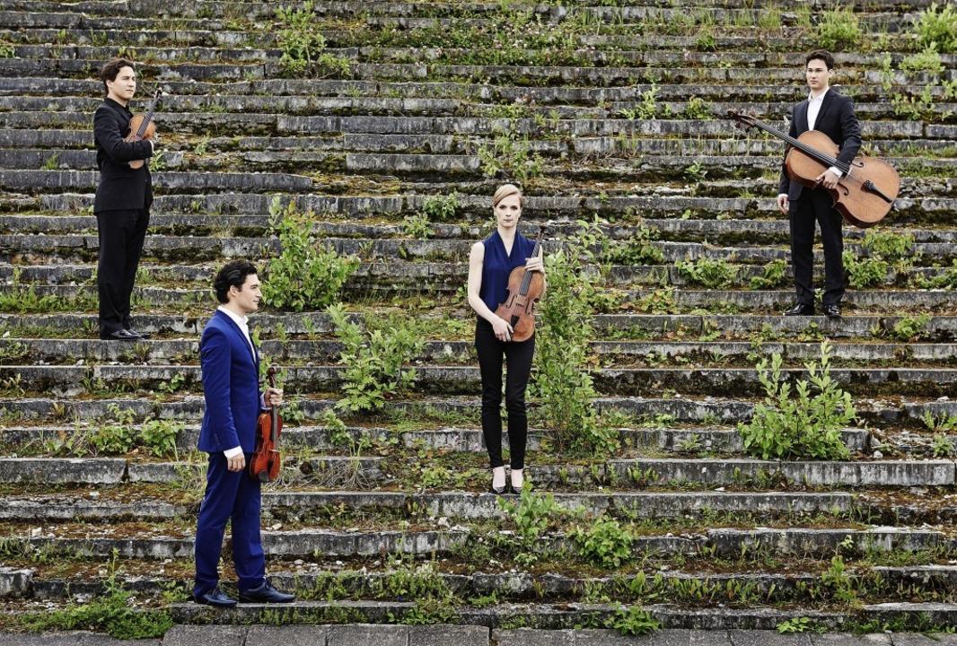 Weit oben auf den Stufen des Erfolgs: das Schumann-Quartett   | Foto: Kaupo Kikkas