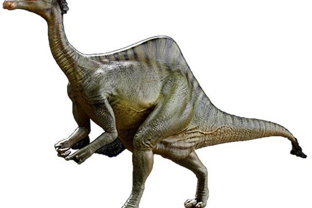 Meteorit hat die Dinos aussterben lassen