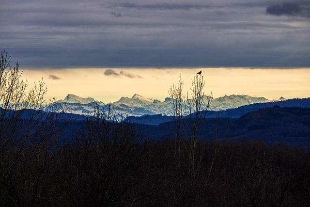Hallo, Alpen!