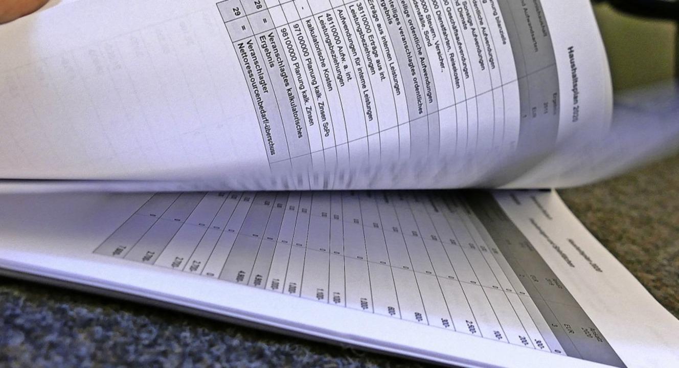 Ein dickes Werk mit 304 Seiten ist der...euem Haushaltrecht aufgestellt wurde.   | Foto: Juliane Kühnemund