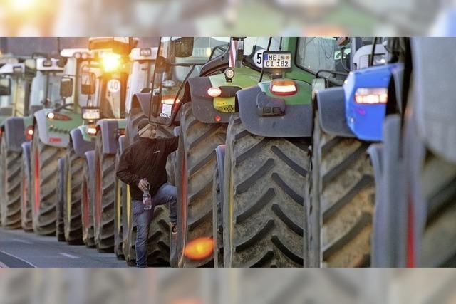 Bauern demonstrieren