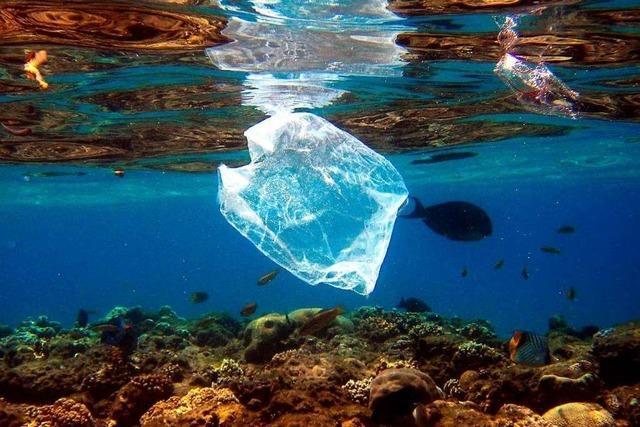 Ägyptischer Badeort Hurghada schützt seine Sandstrände von Plastik-Müll