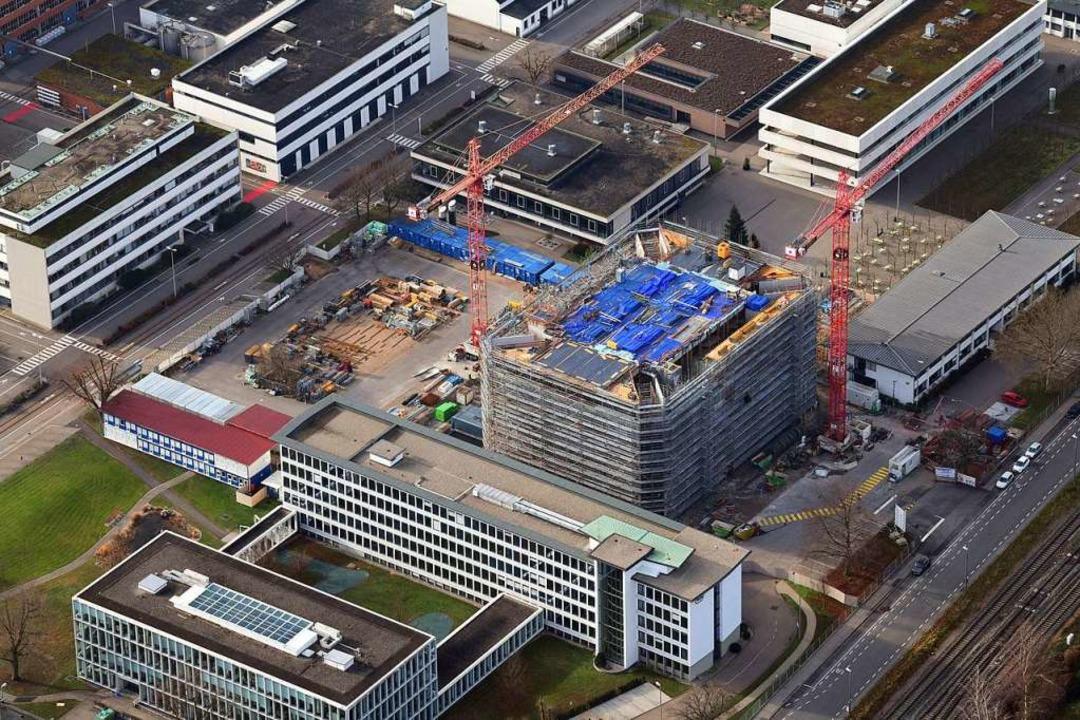 Das FOB auf dem Roche-Campus aus der Luft betrachtet  | Foto: Erich Meyer