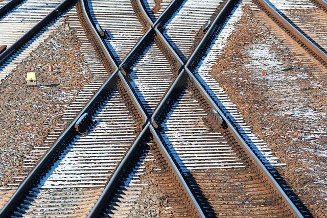 Behörden sehen Verbindungen der trinationalen S-Bahn auf Kurs