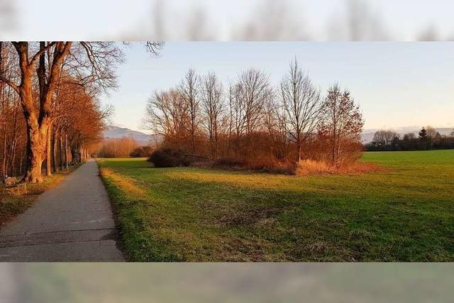 Bürgerinitiative will Mähwiesen schützen – und bekommt Rückenwind