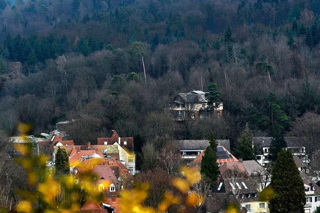 Inzwischen ist die Wiehre-Bebauung unt...as Foto entstand vom Lorettoberg aus.     Foto: Thomas Kunz