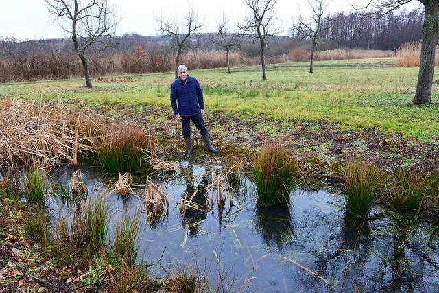 Das Waltershofener Naturschutzgebiet