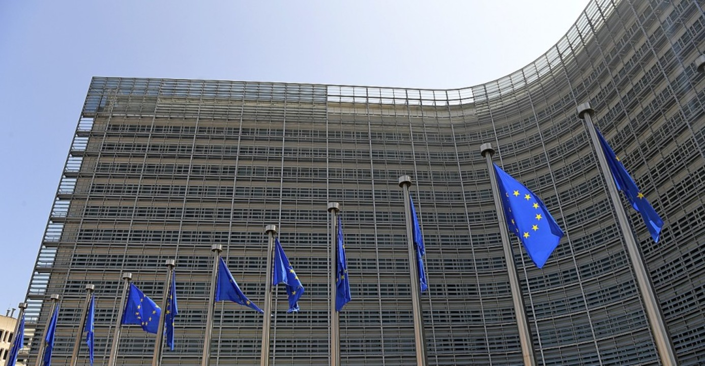 Für Baden-Württemberg wäre ein kurzer Draht zur EU-Kommission wichtig.  | Foto: Roland Schlager