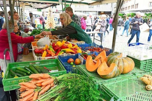 In Freiburg wird zu wenig regional eingekauft, sagt ein Landwirt