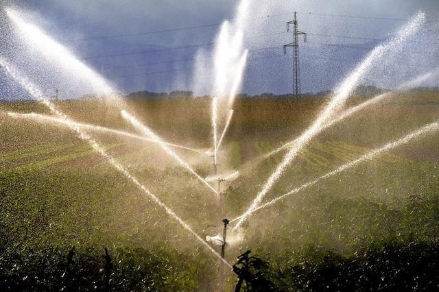 Mehr Wasser zur Feldberegnung?
