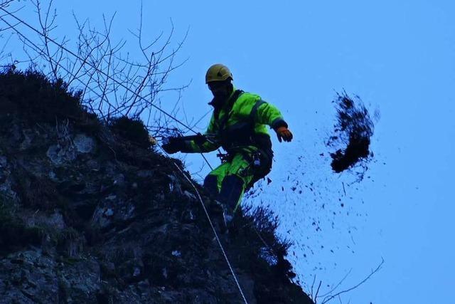 Steinschlag am Hirschsprung: Warum die Bundesstraße 31 für einen Tag gesperrt war