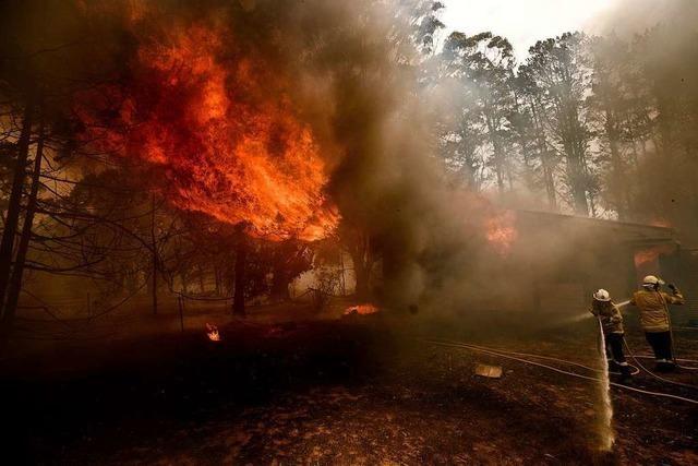 Neue Brände in Australien - Löschflugzeug abgestürzt