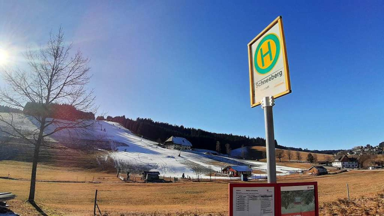 Winter-Insel inmitten graubrauner Wies...pinen Skirennfahrer des SC  Neustadt.   | Foto: Johannes  Bachmann