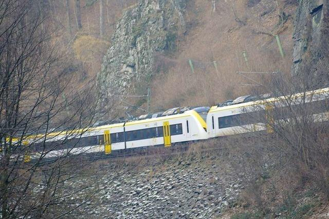 Die Breisgau-S-Bahn ist derzeit die unpünktlichste Regionalbahn im Land