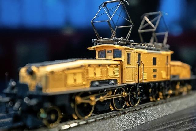 Modellbahnbau liegt im Trend