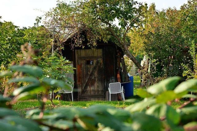 In Riehen wurde in 30 Gartenhäuser eingebrochen