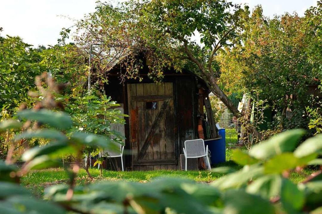 In rund 30 Gartenhütten wurde in Riehen eingebrochen (Symbolfoto).    Foto: Julia Dreier