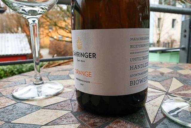 Markgräfler Winzer-Projekt will zum Ursprung des Weinbaus zurückkehren