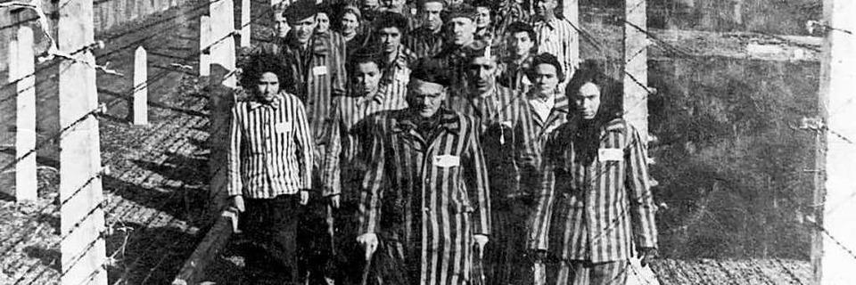 Schulen tun sich mit dem Vermitteln des Holocaust immer schwerer