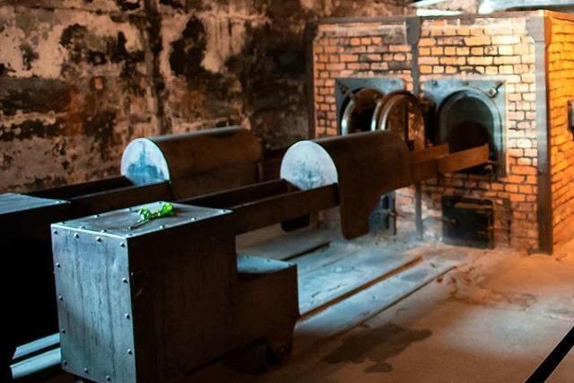 Dokumente aus der Hölle des Holocaust
