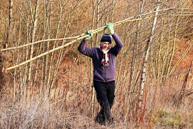 Wie die BUND-Ortsgruppe Grenzach-Wyhlen ein Biotop pflegt