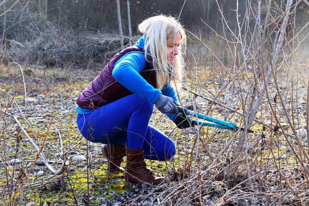 Biotop-Pflege in Grenzach-Wyhlen  | Foto: Ursula Schiller