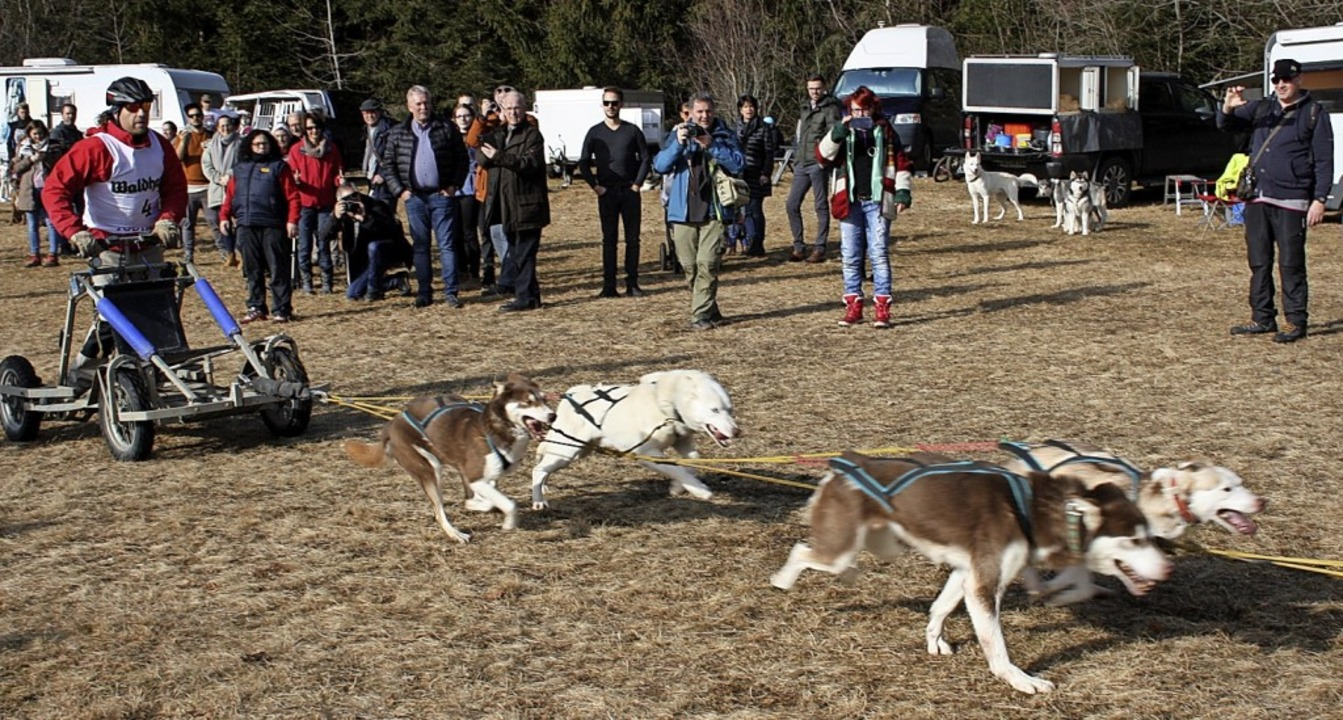 Mit Dogscootern waren die Musher in To...nende bei Trainingsfahrten unterwegs.   | Foto: Andreas Böhm